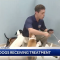 WATCH: Feeling Fine Saves 45 Puppies